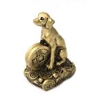 Собака с монетой