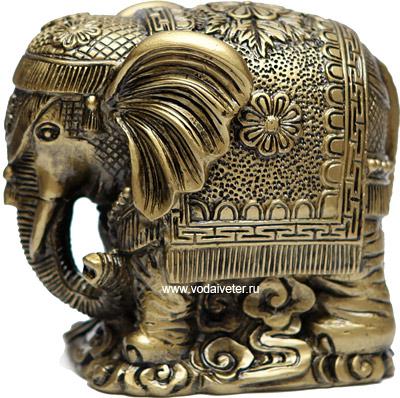 Слон с попоной